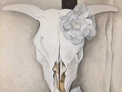 Cows-skull-with-calico-roses
